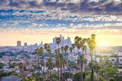Horizon et palmiers de Los Angeles Photographie stock