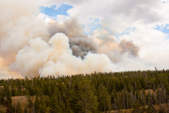 Horizon of Fire in Yellowstone Park Stock Photography