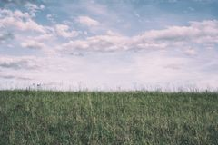 Horizon - grass on the meadow and sky with cloud royalty free stock photos