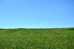 Horizon of meadow and sky Stock Images