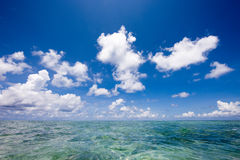 Horizon over clear blue tropical water Royalty Free Stock Photo