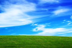 Horizon over Green Field and Beautiful Blue Sky with Clouds Stock Image
