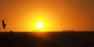 Horizon ships. Cargo ships on horizon at sunset stock photos