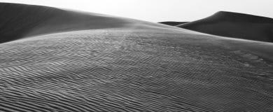 The horizon with some sandy dunes, Dubai Royalty Free Stock Photo