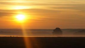 Horizon, Sunrise, Sky, Afterglow royalty free stock photography