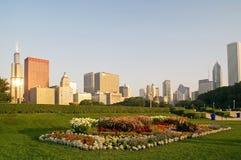 Horizon van Chicago Van de binnenstad stock fotografie