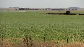 Horizon van Gecultiveerd Land stock footage