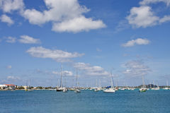 Horizon of White Sailboats at Marina Stock Photo