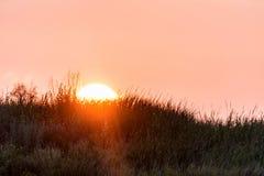 Horizonlijn van platteland met zon het plaatsen stock foto's