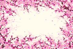 Horizontaal Kader met Plum Blossom Branches vector illustratie
