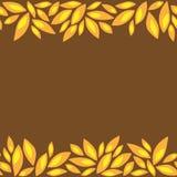 Horizontaal patroonkader met oranje bloemblaadjes Royalty-vrije Stock Afbeeldingen