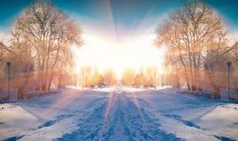 Horizontaal weggeknipt de winterlandschap in het stadspark Stock Foto