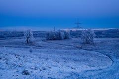 Horizontal écossais en hiver Photographie stock