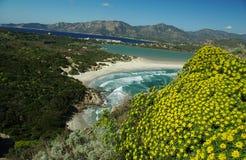 Horizontal étonnant à la plage de Villasimius Images libres de droits