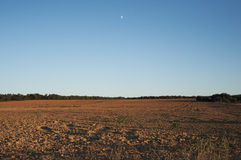 Horizontal Image libre de droits