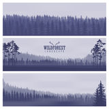 Horizontal abstract banners of hills of coniferous wood in dark blue tone.  Royalty Free Stock Photo