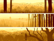 Horizontal banners of hills deciduous wood. Horizontal abstract banners of hills of deciduous wood with birds in yellow tone (sunset royalty free illustration