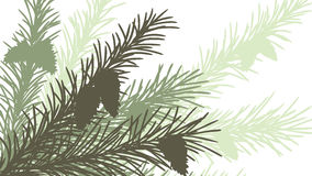 Horizontal abstract illustration of spruce branch. Royalty Free Stock Images