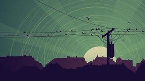 Horizontal abstract night card of flock birds on city power line. Horizontal abstract illustration of night city with birds on power line in green tone Stock Photography