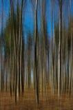 Horizontal abstrait. Image libre de droits