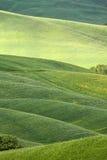 Horizontal accidenté de la Toscane photo libre de droits