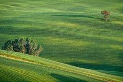 Horizontal accidenté de la Toscane photos libres de droits