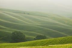 Horizontal accidenté de la Toscane dans le brouillard photographie stock