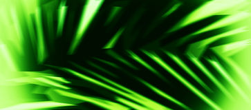 Horizontal acid green palm leaf abstract illustration background Royalty Free Stock Photography