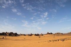 horizontal africain de désert images stock
