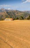 Horizontal agricole Photo libre de droits