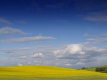 Horizontal anglais rural photographie stock