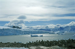 horizontal antarctique Photographie stock