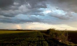 Horizontal après la pluie photos stock