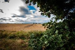 Horizontal arable photographie stock