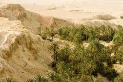 Horizontal aride Photos libres de droits