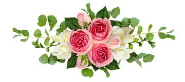 Horizontal arrangement with pink roses, freesia flowers and euca. Lyptus leaves isolated on white. Top view. Flat lay stock image