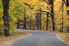 Horizontal Autumn Canopied Road. Leaf dusted road with autumn canopy - horizontal orientation Royalty Free Stock Photo