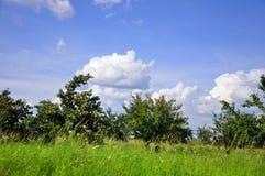 Horizontal avec des nuages Photos libres de droits