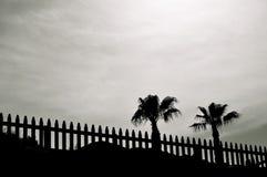 Horizontal avec des paumes Images libres de droits