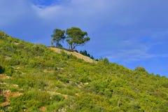 Horizontal avec des pins Image libre de droits