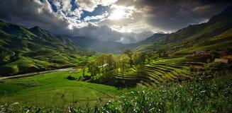 Horizontal avec des terrasses de riz Image stock