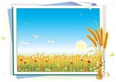 Horizontal avec du blé illustration stock