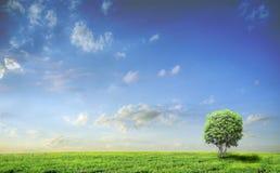 Horizontal avec l'arbre Photo libre de droits