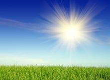 Horizontal avec l'herbe et le ciel Photographie stock libre de droits
