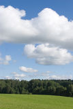Horizontal avec la forêt Photos stock