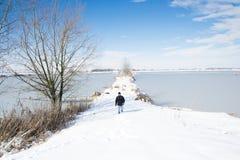 Horizontal avec la neige Photographie stock libre de droits