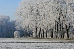 Horizontal avec la neige Images stock