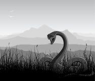 Horizontal avec le serpent fâché Photographie stock libre de droits