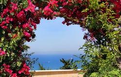 Horizontal avec les fleurs et la mer Photo stock