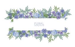 Horizontal background or banner surrounded by gorgeous blue wild blooming flowers and summer meadow flowering plants stock illustration